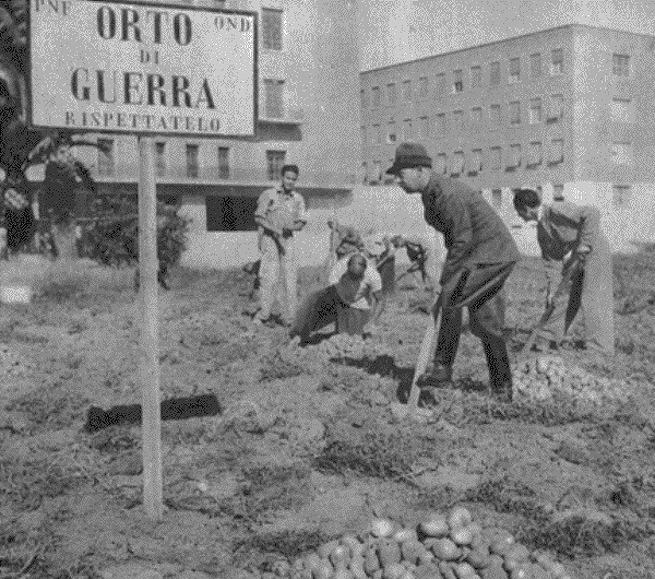 orto di guerra Torino