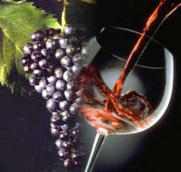 Photo of Il vino rosato del Piemonte, un patrimonio enogastronomico