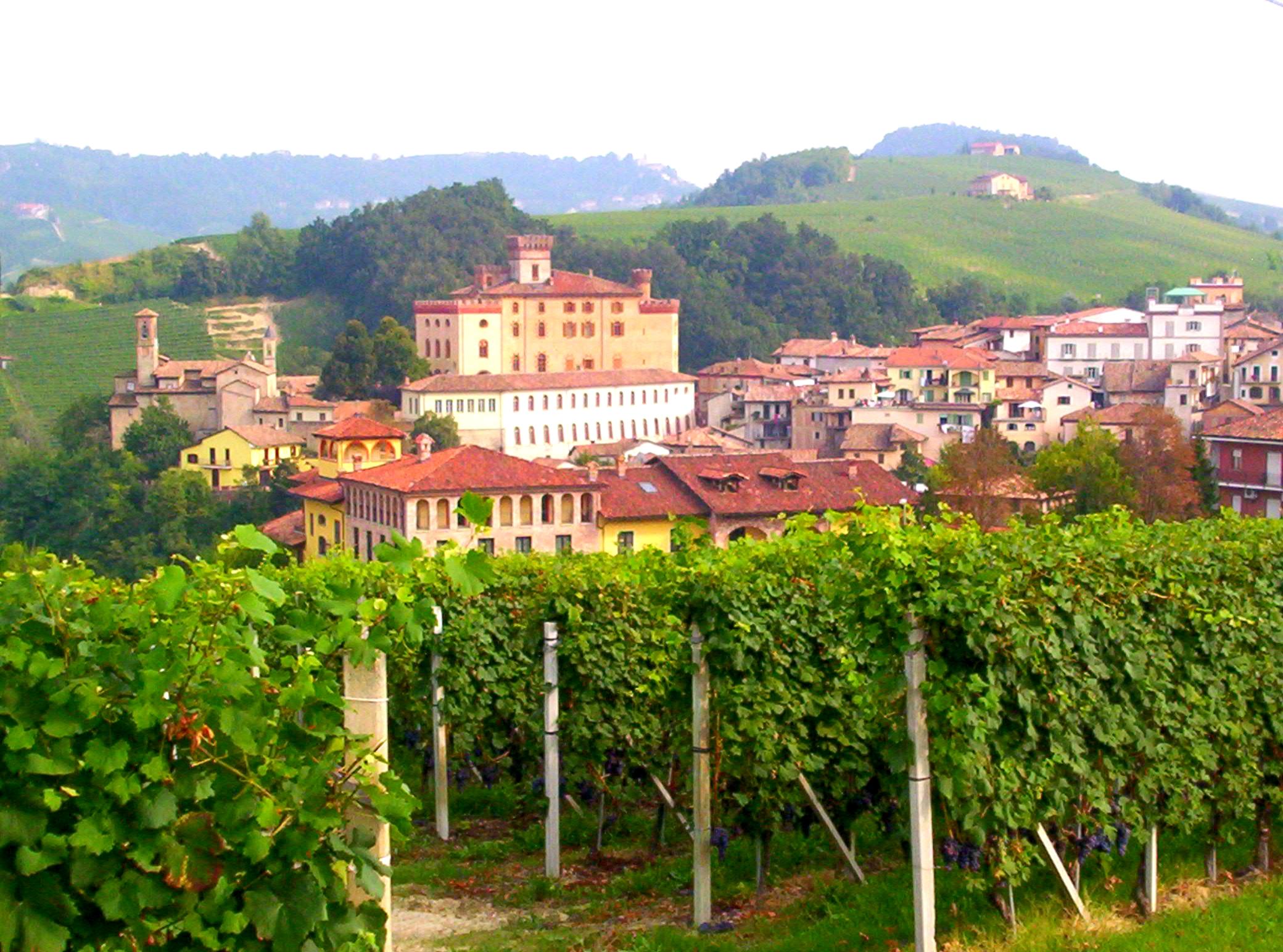 Storia del vino Barolo Piemonte