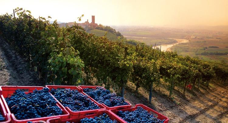 Langhe-Roero e Monferrato