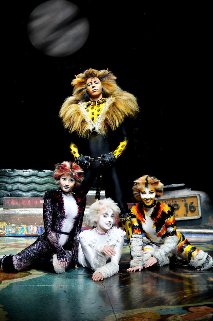 Cats 2A