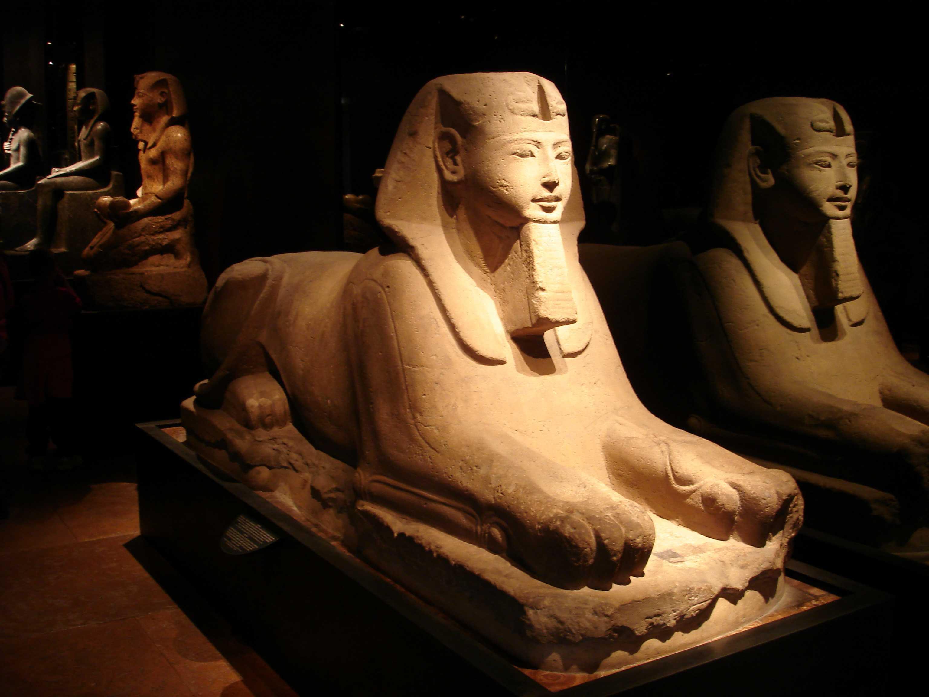 Photo of I maggiori Musei di Torino