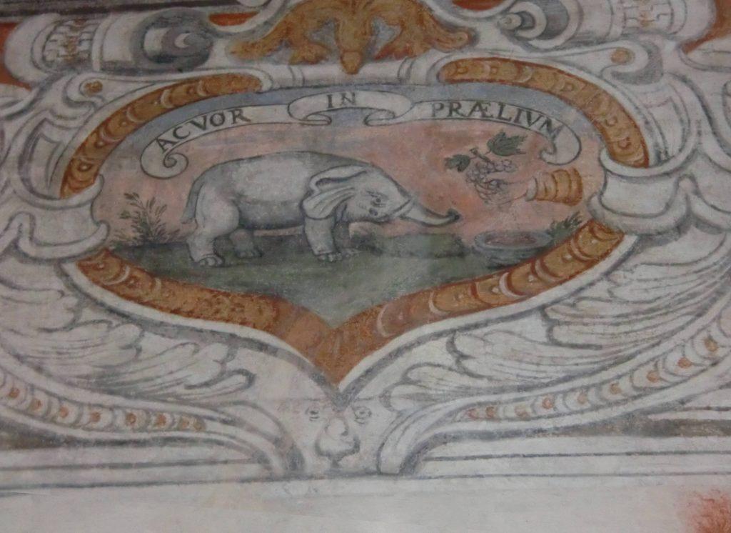 """Castello di Buronzo, viaggio nella """"savana"""" vercellese"""