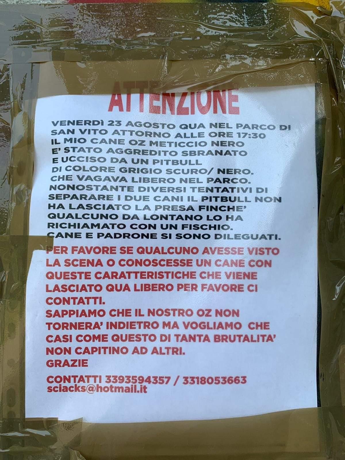 Cane meticcio sbranato a Torino da un pitbull: si cerca il padrone