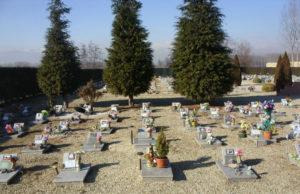 In arrivo il cimitero per animali a Torino: potrebbe essere pronto nel 2020