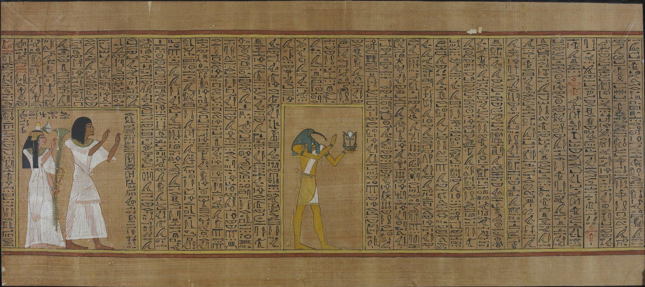 Photo of Museo Egizio di Torino: gli antichi papiri sono ora online grazie a TPOP