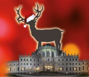 Photo of Natale è Reale 2019: gli eventi natalizi alla Palazzina di Caccia di Stupinigi, Torino