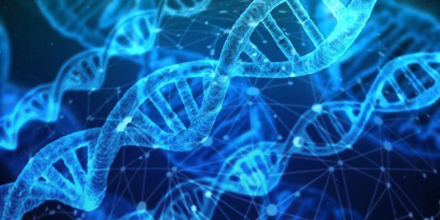 Mutazioni Genetiche Autismo