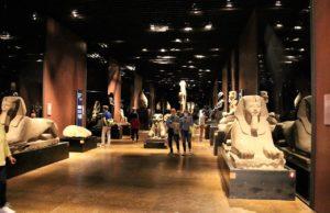 L'Egizio è il re dei musei di Torino: primo nel 2019, davanti a Venaria e al Museo del Cinema
