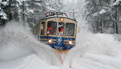 Trno che transita sotto la neve