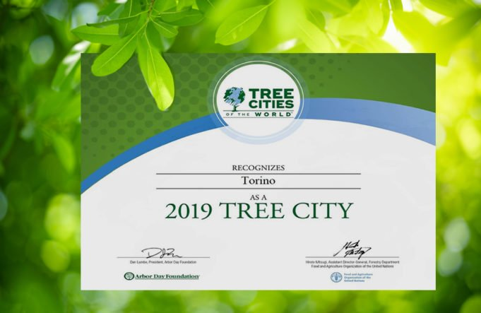 "Photo of La FAO celebra Torino tra le 60 ""Tree Cities of the World"" per la presenza di verde pubblico"