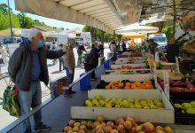 Photo of Crisi del settore agricolo, quest'estate niente frutta in tavola: 1 frutto su 5 sparirà