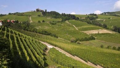 Photo of Lonely Planet e l'Italia on the Road: ancora Torino ed il Piemonte le mete preferite
