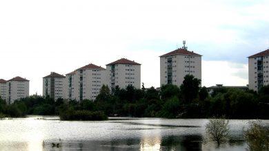 Photo of Il Parco dei Laghetti rilancia il quartiere Falchera.