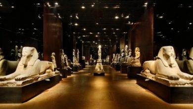 Photo of Giornate Europee del Patrimonio a Torino: ingresso a 1 euro in diversi musei in città