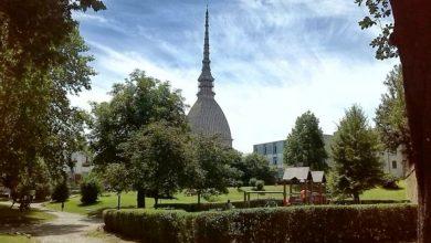 Photo of Verde pubblico Torino: un milione di euro per interventi straordinari