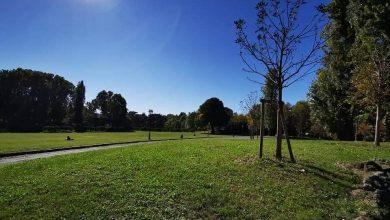 Photo of A Torino le aree verdi si rifanno il look: riqualificazione per nove parchi e giardini